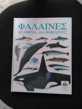 Παράθυρα στον κόσμο: Φάλαινες, δελφίνια και φώκαινες